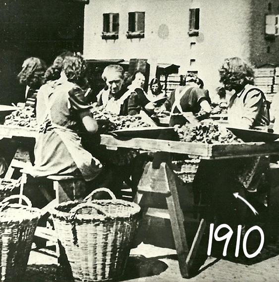 1910_womancleaningbulbs-1