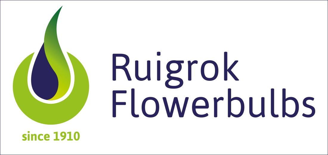 Ruigrok Flowerbulbs 3
