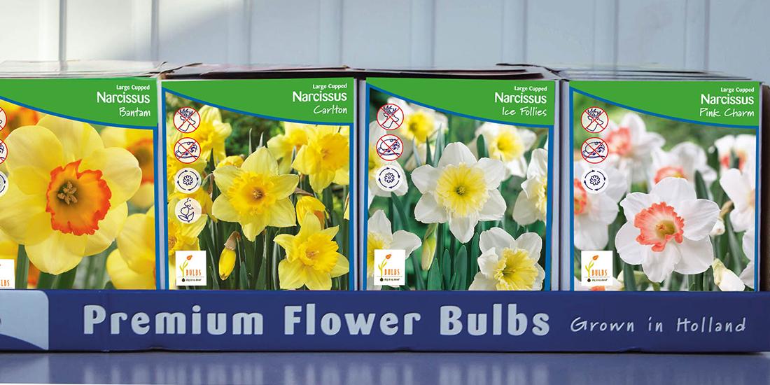 retail-ruigrok-flowerbulbs