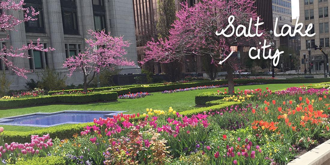 landscape-professionals-saltlakecity-ruigrok-flowerbulbs