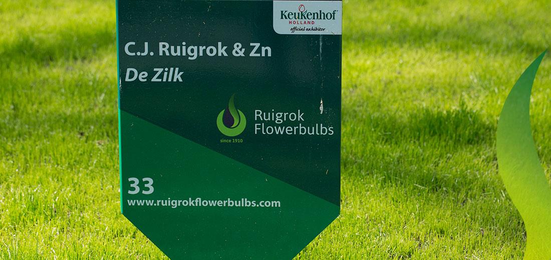 170320_RuigrokFlowerbulbs