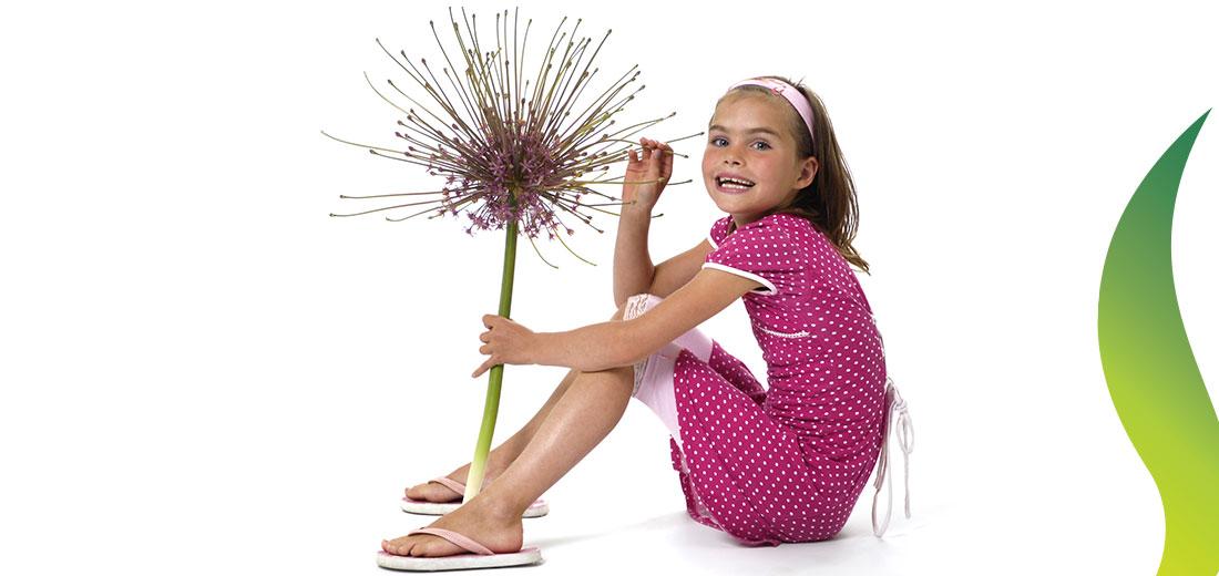 The season of the Allium