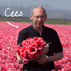 cees-ruigrokflowerbulbs-team