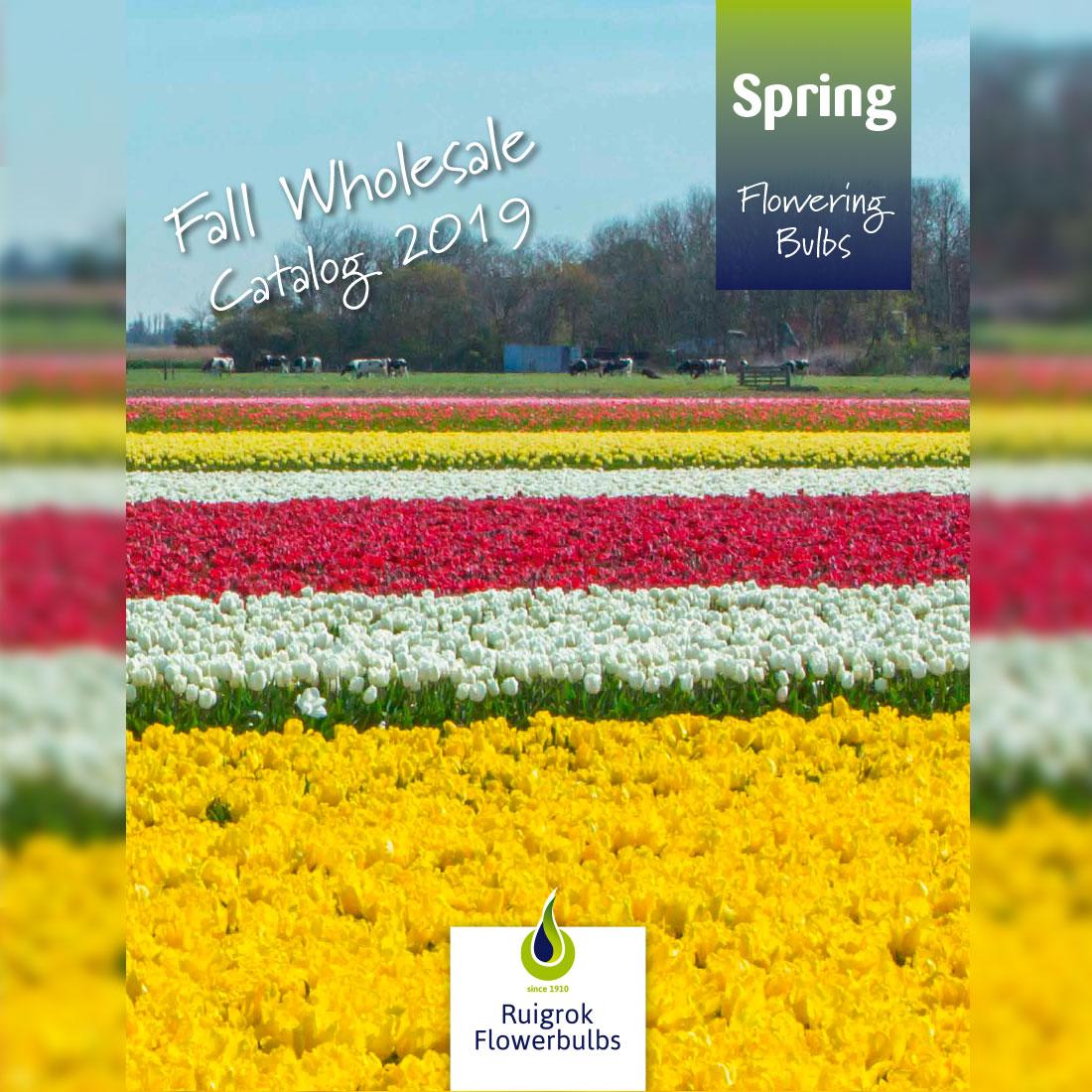 Fall Wholesale Catalog