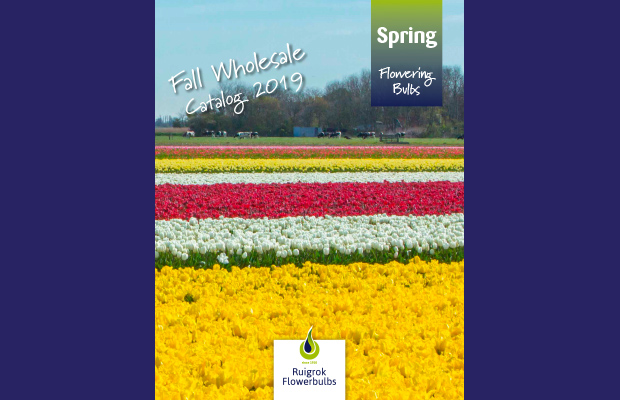 Fall Wholesale Catalog Ruigrok Flowerbulbs