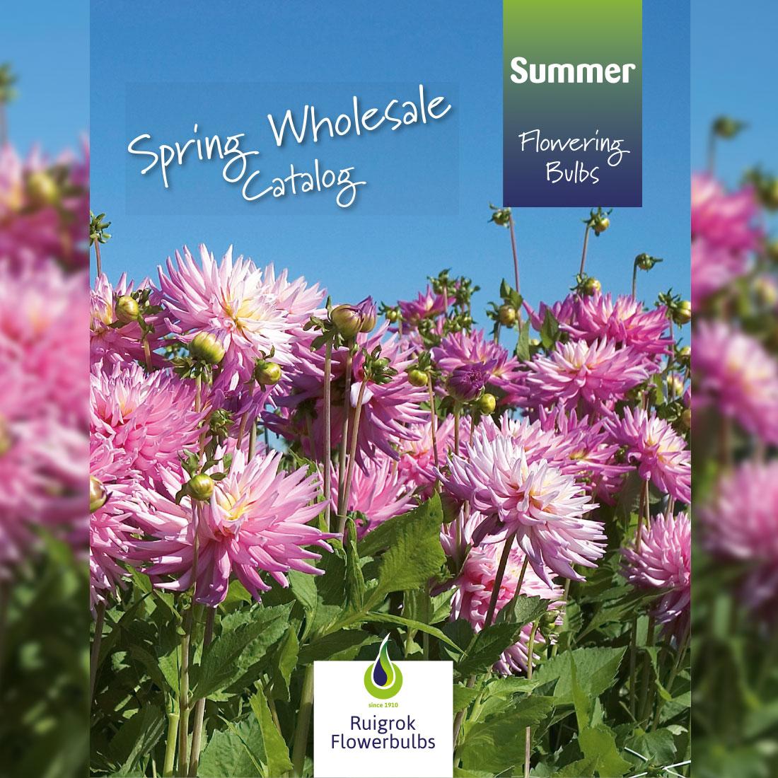 Spring Catalogus Ruigrok Flowerbulbs